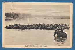 SIAM THAILAND ELEPHANTS AYUTHIA VOYAGE N°A596 - Tailandia