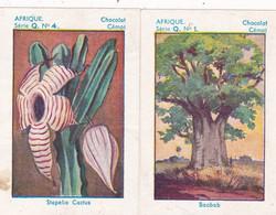 Chromo - Image : 2 Images : Chocolat CEMOI : N° 1 - 4  : Série Q  : Afrique : - Sin Clasificación