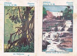 Chromo - Image : 2 Images : Chocolat CEMOI : N° 8 - 10  : Série U  : Afrique : - Sin Clasificación