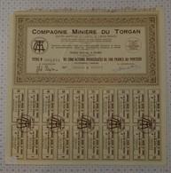 Miniere Du Torgan - Mineral
