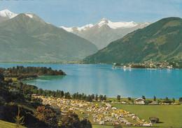523) ZELL Am SEE - Campingplatz M. Hoh. Tenn - Imbachhorn U. Kitzsteinhorn - - Zell Am See