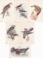 Chromo - Image : 6 Images : Fromageries GROSJEAN FRERES : Oiseaux De Nos Pays : N° 3 - 40 - 43 - 46 - 48 - 81  : - Andere
