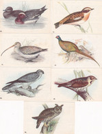 Chromo - Image : 7 Images : Fromageries GROSJEAN FRERES : Oiseaux De Nos Pays : N° 14 - 29 - 53 - 55 - 60 - 68 - 81 : - Andere
