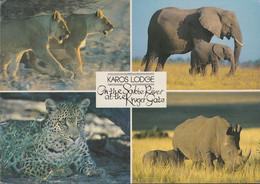 South Africa - Karos Lodge - Elephant - Lion - 2x Nice Stamps - Südafrika