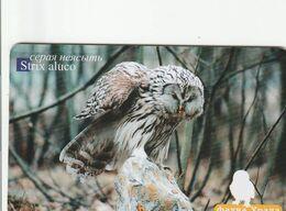 Russia - Fauna Urala - Tawny Owl 150un. - Russie
