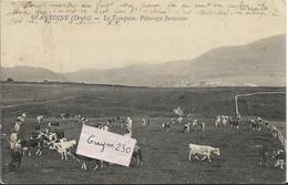 St ANTOINE Le Troupeau - Andere Gemeenten