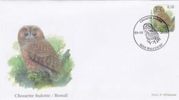 Enveloppe FDC 3959 Oiseau A Buzin Chouette Hulotte Rapace Walcourt - 2001-10