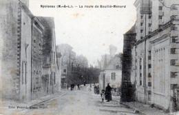 Nyoiseau. La Route De Bouillé-Ménard. - Other Municipalities