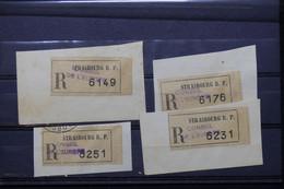 FRANCE - Lot De 4 étiquettes En Recommandé Du Conseil De L 'Europe à Strasbourg Sur Fragment - L 79701 - 1921-1960: Période Moderne