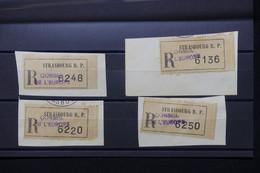 FRANCE - Lot De 4 étiquettes En Recommandé Du Conseil De L 'Europe à Strasbourg Sur Fragment - L 79702 - 1921-1960: Période Moderne