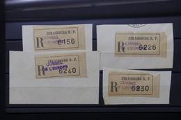 FRANCE - Lot De 4 étiquettes En Recommandé Du Conseil De L 'Europe à Strasbourg Sur Fragment - L 79703 - 1921-1960: Période Moderne
