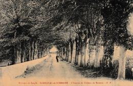 L'AIGLE - 61 - Orne - Environs De LAIGLE - St-Nicolas De Sommaire - L'avenue Du Château De Raveton - L'Aigle