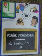 Junior Hebdomadaire N° 45 / Novembre 1976 - Disney