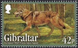 GIBRALTAR, 2012, Animaux (faune) | Loups | Mammifères - Chiens