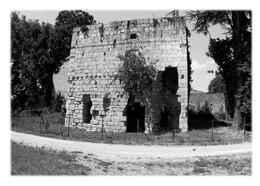 COLOMBIER-LE-CARDINAL - Ruines Du Couvent Du Château Des Célestins - Otros Municipios