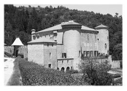 GILHOC-SUR-ORMEZE - Château Des Boscs - Sonstige Gemeinden