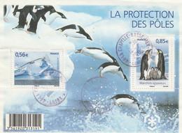 FRANCE 2009 BLOC OBLITERE LA PROTECTION DES POLES - F4350 -  F 4350           - - Afgestempeld