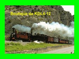 ART 269 - Train - Loco Corpet Louvet 030 T N° 36 Et Henshel 120+030 T N° E 211 Vers SAINT-BENOIT - CP - Trains