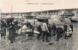 CANCALE-35-LE TRIAGE DES HUITRES - Cancale