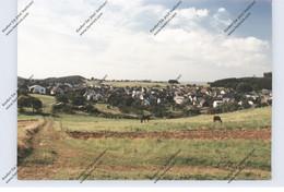 6345 HIRZENHAIN, Gesamtansicht - Friedberg