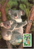 Carte Maximum Timbre De Service 139 UNESCO Koala D'australie, TBE 1er Jour 13 12 2007 Paris (75) - 2000-09
