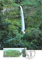 Carte Maximum YT 3026 Ou 3027 La Forêt Amazonienne Au Brésil 1er Jour 21 06 2008 TBE Rio, Serra Do Aracà - Maximum Cards