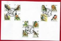 """1991 - Exposition André Buzin """"Les Oiseaux"""" - Bruxelles 28 Septembre  1991 - 1985-.. Pájaros (Buzin)"""