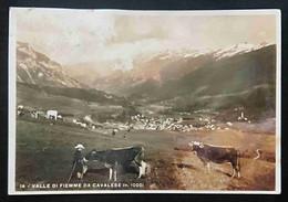 VALLE DI FIEMME DA CAVALESE - Vg 1936 TA3 - Trento