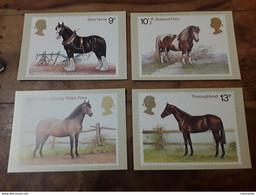 4 Cartes CHEVAUX - Cavalli