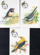BUZIN N° 2474/2476  Oiseaux (3 Cartes) - 1991-2000