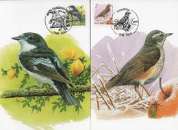 BUZIN N° 2653/2654 Oiseaux (2 Cartes) - GENK - 1991-2000