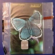 Télécarte 100 Unités ANDORRE - Papillon Bleu - Andorra