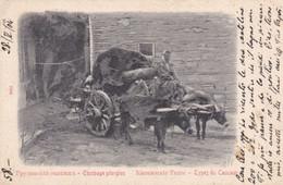Equipage Georgien - Types Du Caucase ( Georgia, Ex-Russia)  - F.p. - Anni '1900 - Rusland
