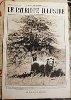 Le Patriote Illustré N°24 Du 14 Juin 1931 - Altri