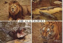 CPM - Parc Zoologique De La PALMYRE ROYAN - Edition Marcou - Lot De 2 Cartes - A SAISIR - Other
