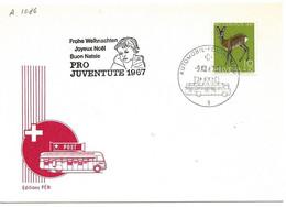 """270 - 17 - Carte PEN Avec Oblit Spéciale """"Pro Juventute 1967"""" - Marcofilie"""