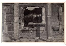 TIVOLI Villa Adriana Natatorium - Tivoli