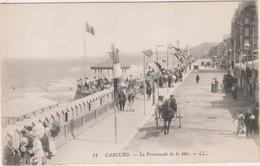 SP- 14 - CABOURG - La Promenade De La Mer - Cheval - Charrette - - Cabourg