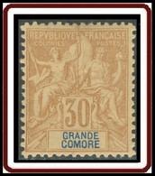 Grande Comore - N° 09 (YT) N° 9 (AM) Neuf *. - Unused Stamps