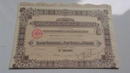 La Compagnie BRUNSWICK Française (1910) - Zonder Classificatie