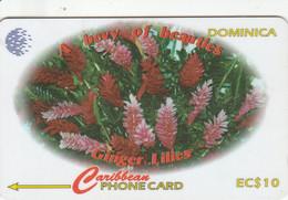 Dominica - Ginger Lilies - 138CDMA - Dominica