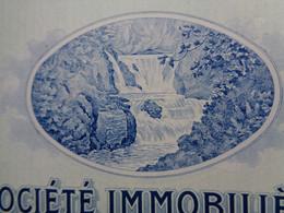 """FRANCE - 66 - STE IMMOBILIERE DES HOTELS & DES THERMES D'AMELIE LES BAINS - ACTION DE 500 FRS """"B"""" - PARIS 1929 - Zonder Classificatie"""