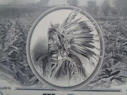 USA - THE AMERICAN TOBACCO CIE - TITRE DE 100 ACTIONS  - 1960 - DECO AVEC UN INDIEN - Zonder Classificatie