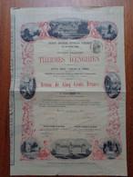 FRANCE - 95 - ENGHEIN 1870 - SA DES THERMES D'ENGHEIN - ACTION DE 500 FRS - ETAT MOYEN , VOIR DETAIL - Zonder Classificatie