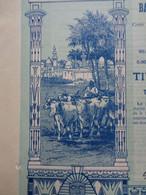 EGYPTE - ALEXANDRIE 1905 - THE LAND BANK OF EGYPT - ACTION DE 5 £ - BELLE DECO - Zonder Classificatie