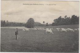 D58 - ENTRAINS SUR NOHAIN - UN COIN DU PARC - Troupeau De Vaches Avec Un Homme - Other Municipalities