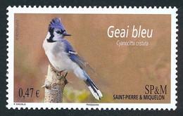 ST-PIERRE ET MIQUELON 2013 - Yv. 1058 **   Faciale= 0,47 EUR - Oiseau Geai Bleu  ..Réf.SPM12555 - Unused Stamps