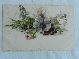 CPA  Anemones    Illustrateur KLEIN  1903 - Klein, Catharina
