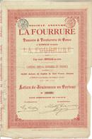 Titre Ancien - - Société Anonyme La Fourrure - Tannerie & Teinturerie De Peaux -Titre De 1895 - - Textil