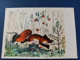 Painter Vasnezov, Fox. Old Postcard 1969 - Mushroom / Champignon - Rare Edition - Funghi